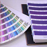 pantone_fh_sp_guide-008.jpg