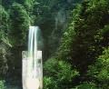 森林と飲料水(CG)