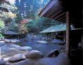 黒川温泉の露天風呂(熊本県)