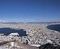 函館山からの雪の市街地