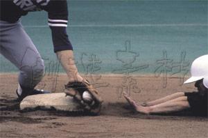 野球の画像 p1_6