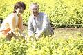 花畑とシニアカップル