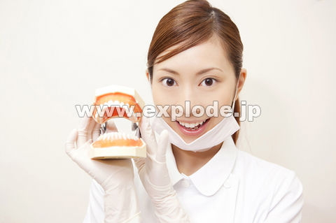 歯の模型を持つ歯科衛生士 ▼この写真素材が収録されている素材集  歯の模型を持つ歯科衛生士