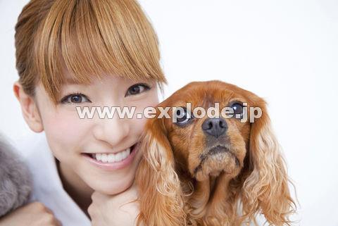 キャバリアと笑顔の獣医看護師