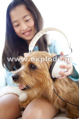 ノーフォークテリアにヘッドフォンをかける女の子