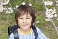 桜の下で微笑む小学生男子