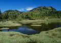 長野県 山ノ内町 四十八池湿原