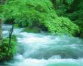 082:渓流