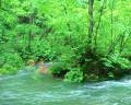 083:渓流