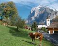001:スイス グリンデルワルト