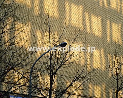 025:ビル 場所:日本