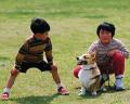 003:男の子 女の子 犬(ウェルシュ・コーギー・ペンブローク)