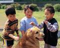005:男の子2人 女の子 犬(ゴールデン・レトリバー)