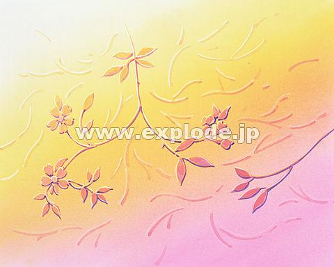 018: 春のイメージ