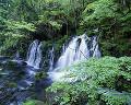 005: 秋田県 苔滝
