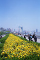036: 上海 外灘(バ ンド ワイタン)