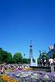003: 札幌 大通公園 さっぽろテレビ塔 夏