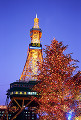 005: 札幌 さっぽろテレビ塔 ホワイトイルミネーション 冬 夜景