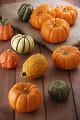 001:かぼちゃ