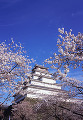001:鶴ヶ城公園