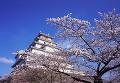 002:鶴ヶ城公園
