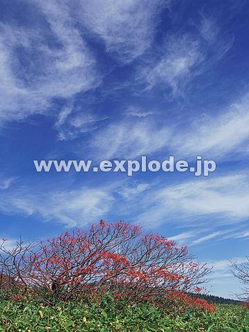 004:草津白根山