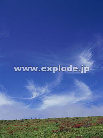 008:志賀高原