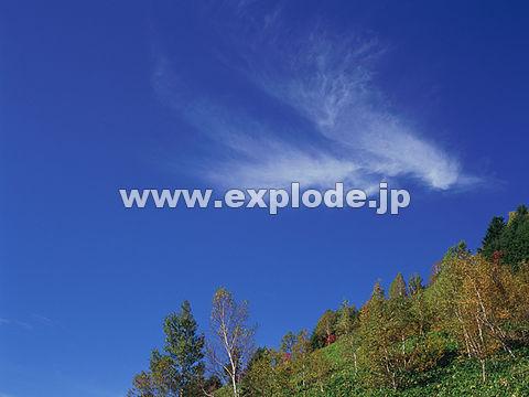 009:志賀高原