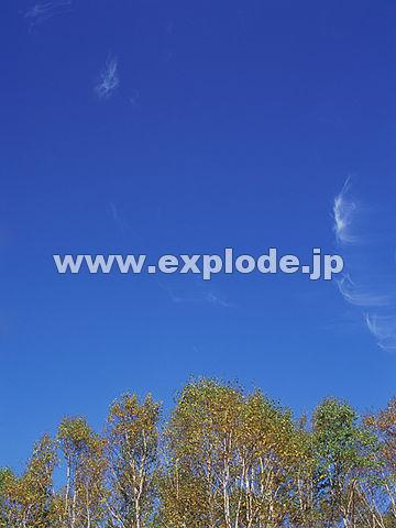 042:志賀高原