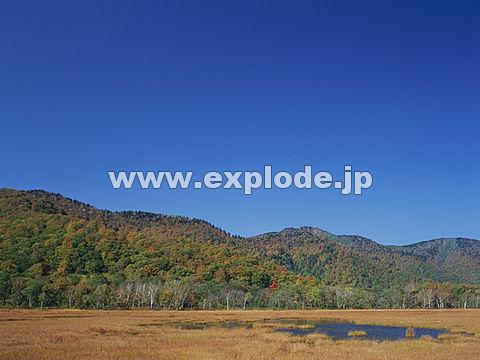 048:尾瀬ヶ原