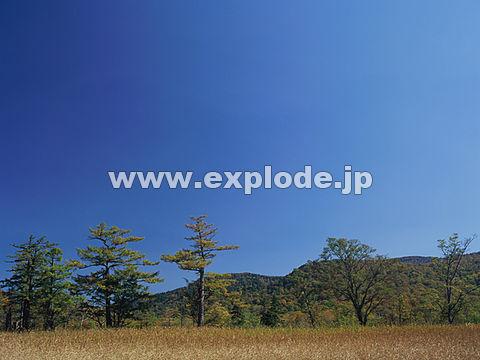 049:尾瀬ヶ原