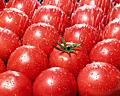 002:トマト