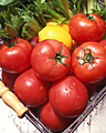 005:トマトとレモンとパセリ