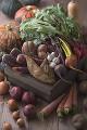 泥付き野菜集合
